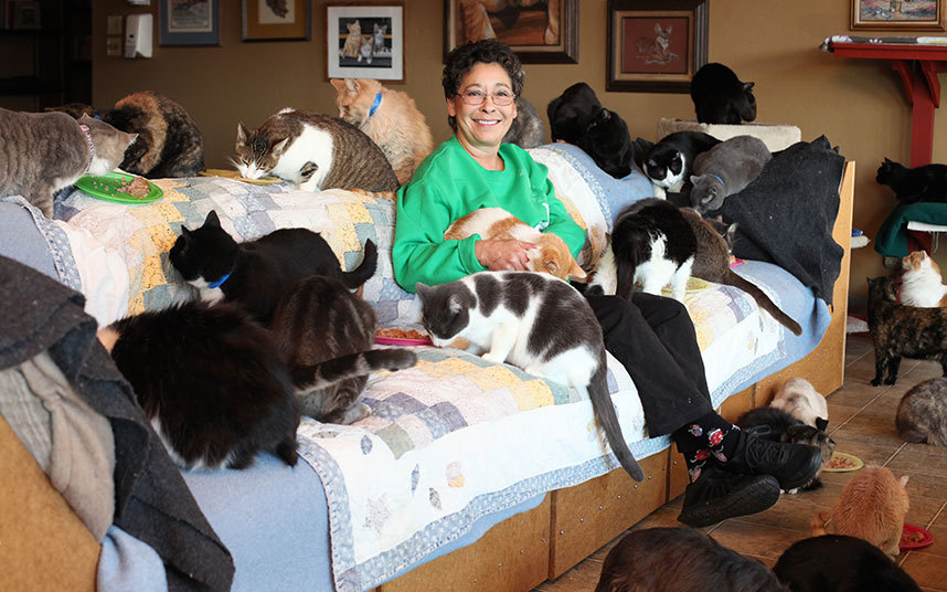 this 67yearold woman lives with 1100 cats who shes