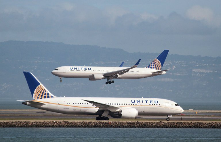 Flight attendant was unaware dog was in overhead bin - United Airlines