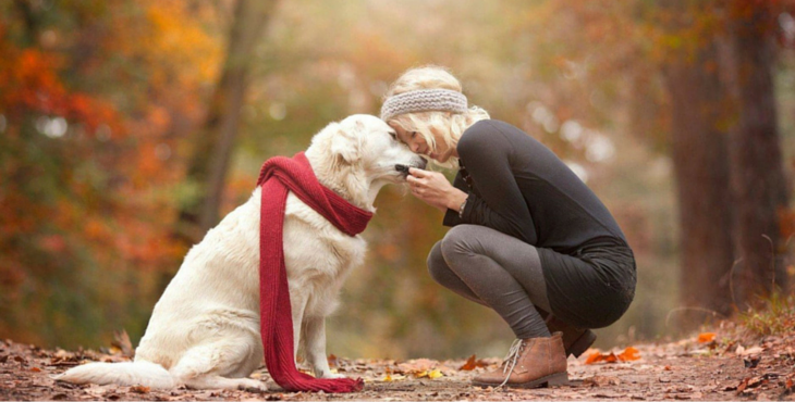 13 Uplifting Quotes That All Animal Lovers Should Know