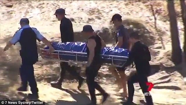 'Hero' dog saved after responding to Murray River drowning