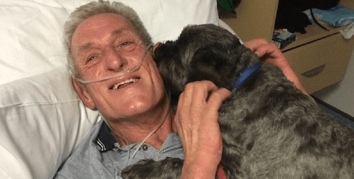 A Man And His Dog >> The Incredible Bond Between A Man And His Dog Helps Pull Him Out Of