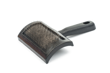 Cat Brushes Treat Your Cat S Hair Holidogtimes